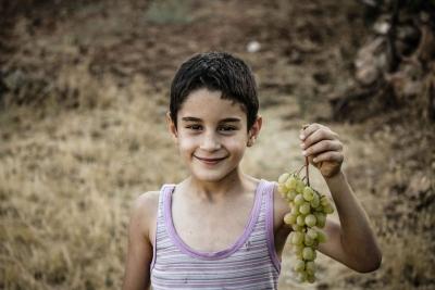 احمد غيث