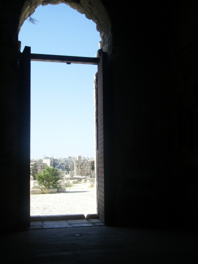 علاء شنطي