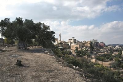 البلدة القديمة في الجيب ( القدس)