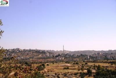 زياد الجيوسي